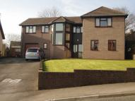 Detached property for sale in Bluebell Court, Ty Canol...
