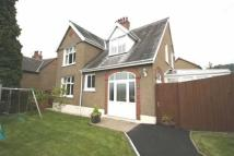 4 bed Detached house in The Ellipse...
