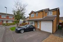 4 bed Detached property to rent in Lemur Drive...