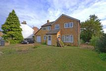 Detached property to rent in Rooke Street, Cottenham...
