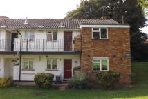 1 bedroom Flat to rent in Victor Close