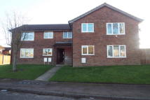 Flat to rent in Hadfield Road...