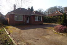 Bungalow to rent in Fakenham Road, Drayton