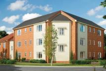 Flat in Coot Drive, Sprowston