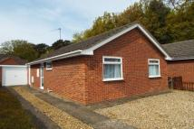 2 bed Bungalow to rent in Hammond Close, Sprowston