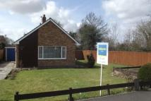 Bungalow to rent in Hethersett, NR9