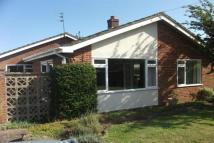 Bungalow to rent in Blofield - NR13