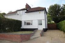 3 bed semi detached house in Primrose Crescent - NR7