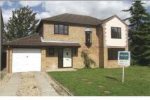 4 bedroom property to rent in Hunters Oak, Watton