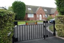 Bungalow to rent in New Horse Road...