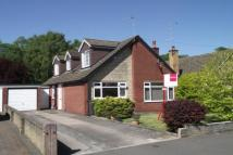 4 bed Detached Bungalow in Beech Drive, Clough Hall...