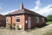 Bungalow to rent in Crewe Road; Wistaston;...