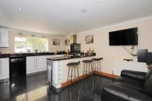 3 bedroom semi detached property for sale in Normoor Road...