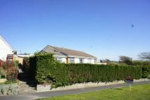 Bungalow for sale in Poughill