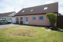 Detached Bungalow for sale in Crackington Haven