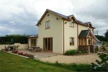 3 bed Detached house for sale in Elms Road, Raglan, Usk...