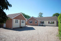 3 bed Detached Bungalow in South Norfolk