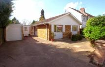 Bungalow to rent in Meadow Road - Claygate