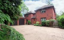 4 bed Detached house to rent in Stevens Lane - Claygate