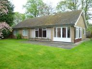 Detached Bungalow in High Street, Gosberton...