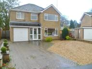 1 bedroom Detached property to rent in RUTLAND CLOSE, Spalding...