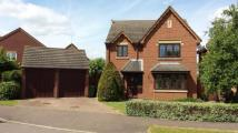 4 bedroom Detached home to rent in Stukeley Meadows...