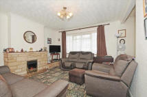 3 bed semi detached property in Haselbury Road...