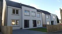 3 bed new development in 8 Glenpatrick Road...