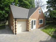 Bungalow to rent in Birtley