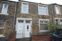 2 bed Flat to rent in Felling