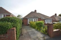 Bungalow to rent in Low Fell