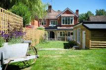 3 bed semi detached home for sale in Doctors Lane, West Meon...