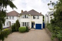 Detached property for sale in Acacia Road, Hampton...