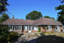 Bungalow for sale in Lane End Road, Bembridge