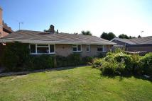 The Drive Bungalow for sale