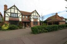 WORRELLE AVENUE Detached house to rent