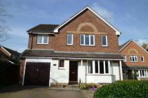 Detached house in Saffron Meadow, Standon...