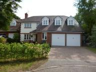 Detached property to rent in Little Brook Road...