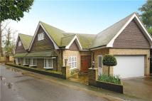 6 bed Detached house in Cobbetts Hill, Weybridge...