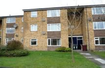 Harewood House Flat to rent