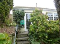 Launceston Road Bungalow to rent