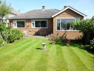 Detached Bungalow for sale in Dunaven, Woodburn Drive...
