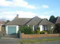 Grosvenor Avenue Detached Bungalow to rent