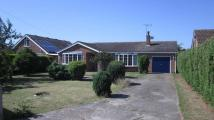 Bungalow to rent in Hunter`s Lane...