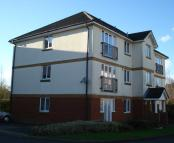 Flat to rent in Beechfield Drive...