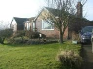 Bungalow to rent in Hillcrest, Scotton