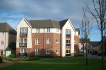 1 bed Ground Flat in Saturn Road, Ipswich, IP1