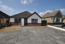 Ashingdon Road Detached Bungalow to rent