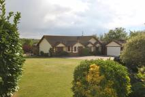 3 bed Detached Bungalow for sale in Fourth Avenue...