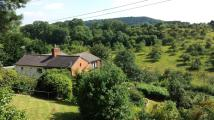 Detached property for sale in Fownhope, Hereford...